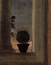 Vénus urbin titien arbuste